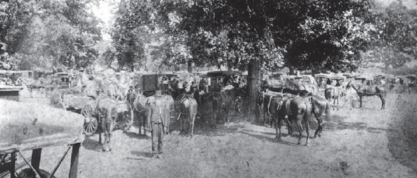 1892 Confederate Reunion at McGavock's Grove, courtesy of the Heritage Foundation of Franklin and Williamson County