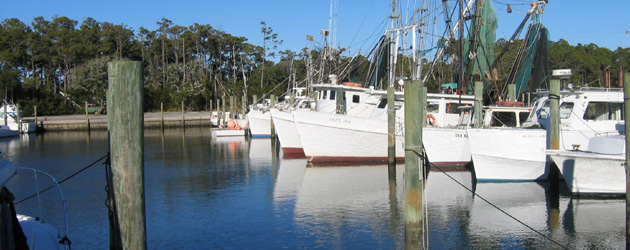 Fishing vessels at Harkers Island's harbor
